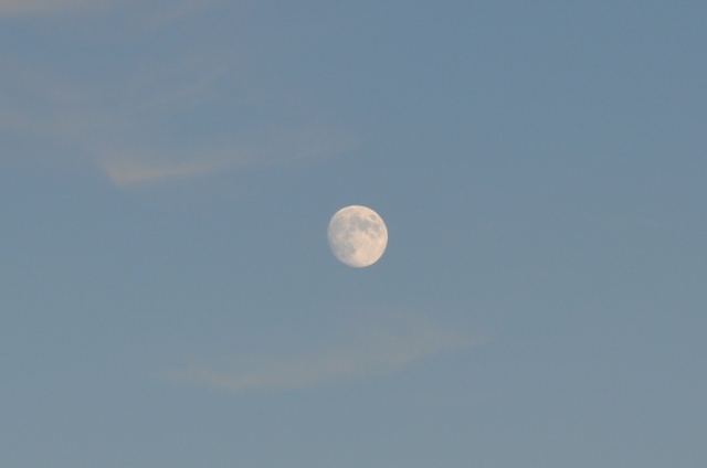 late afternoon - nearly full moon