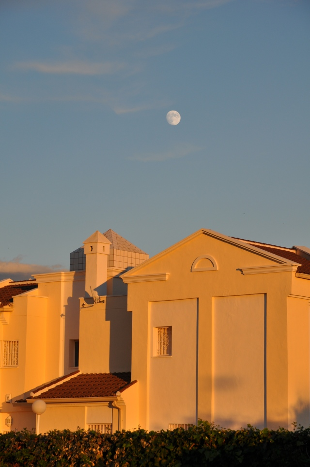 late afternoon - nearly full moon over houses