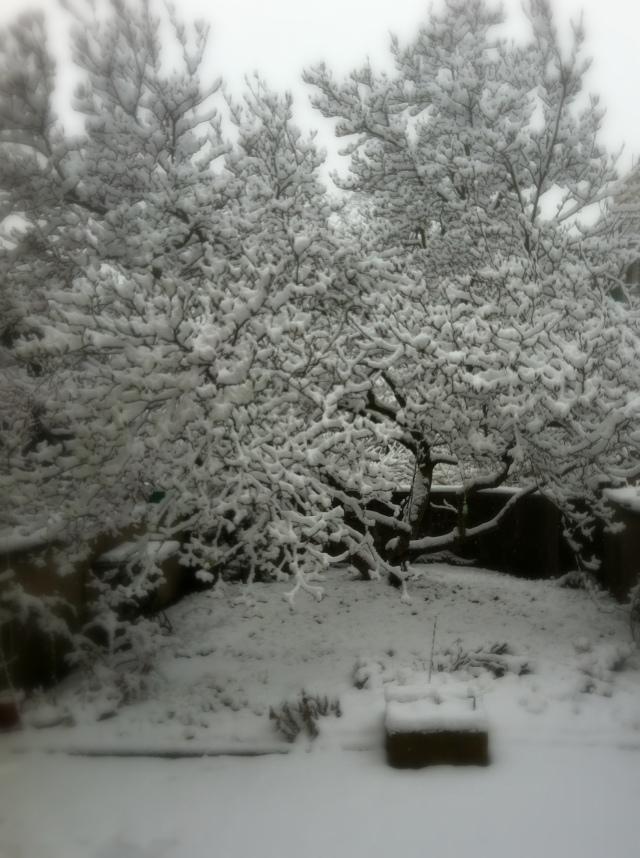 prague snow 2