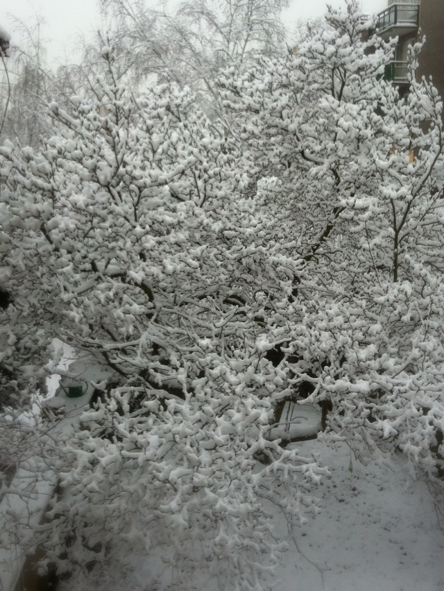 prague snow 1