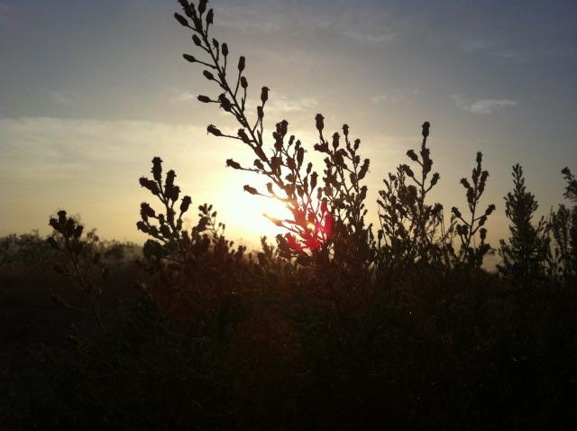 sunrise in october - skalabara.com