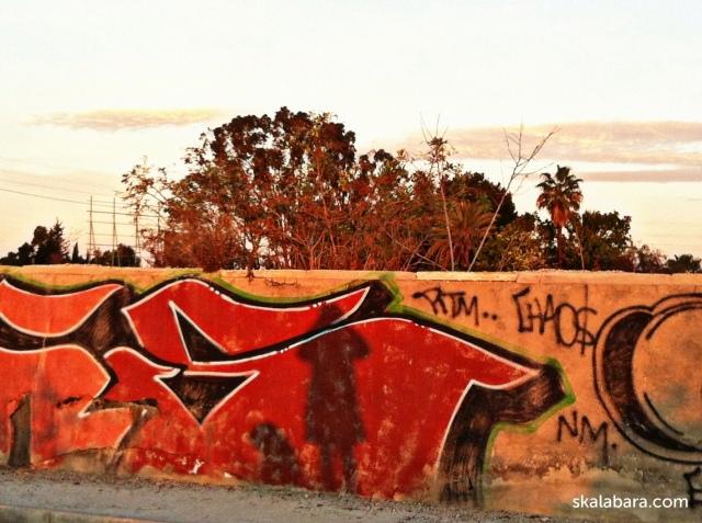 graffiti, dog and myself - skalabara.com