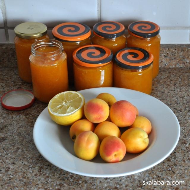 apricot preserve - skalabara.com