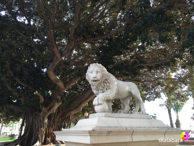 lion on guard in alicante spain - skalabara