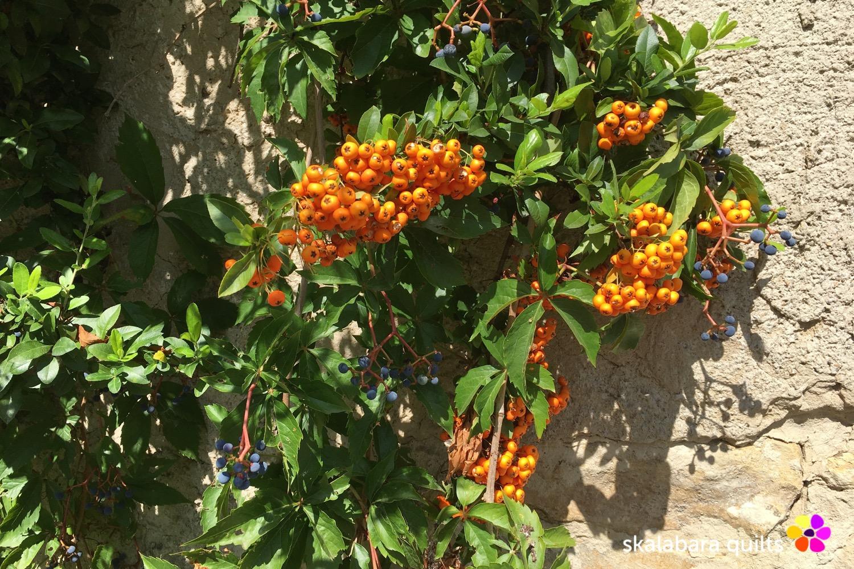 autumn berries 1 - skalabara quilts